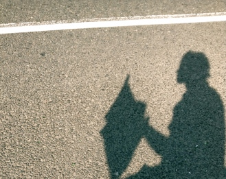 shadow fly