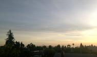 berkeley rooftops