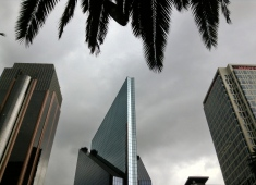 palms and futurists, Mexico City