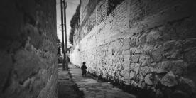 hijo del áligüey, Tlalpan, Mexico City