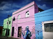 a cat perches above a colorful street of Puebla, Puebla