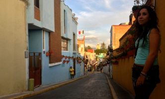 smiley wallflower, Atlixco, Puebla