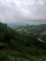 magical mountainsides of Chiapas