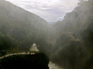 mist bridge, chiapas