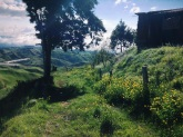 path less traveled, Costa Rica