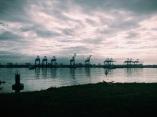 mechanical giraffes, Colon, Panamá
