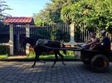 blurred smile, Nicaragua