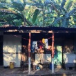 jungle rockers, Playa Flamingo, Costa Rica