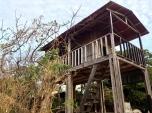 ghosts guarding, Playa Grande, Costa Rica