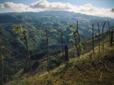this is what happens when I take uncharted roads, Costa Rica