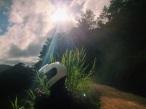 alien traveler, Costa Rica