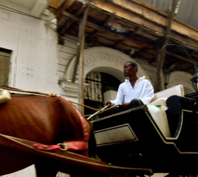 A tired horse pulls a pensive taximan giving a silent tour to an empty carriage. Cartagena