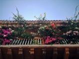 Beauty up above! Cartagena
