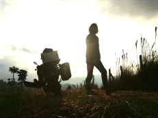 Rising sun packing session, Antioquia