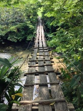 To cross or not to cross... Antioquia
