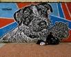 House dog, street man and wild cat, Bogotá
