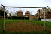 Animals are people too, they can play soccer, Bogotá
