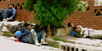 A non napper hangs out with his resting friends on their work break, Bogotá