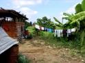 jungle dryer. Piura