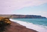Soar. Paracas