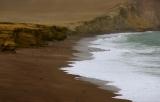 Beach birds. Paracas