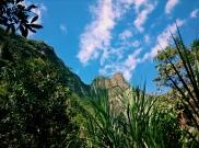 Machu Picchu from below.
