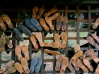 Sheer shoein'. Puerto Maldonado