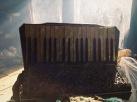 d'accordion